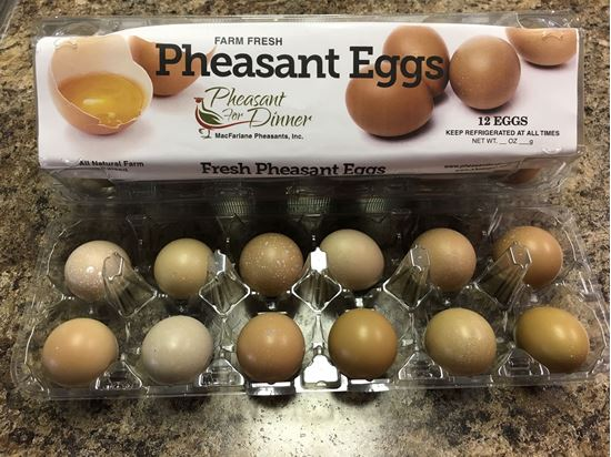 Picture of Pheasant Eggs